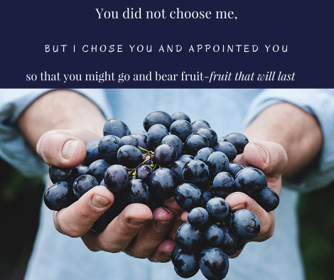 You did not choose me,